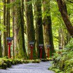 Approach to Okumiya of Kifune Shrine. Sakyo-ku, Kyoto, Japan