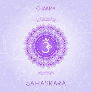 Vector illustration with symbol chakra Sahasrara on ornamental b